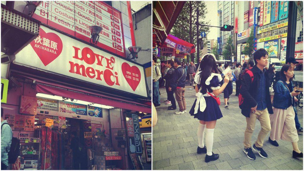 tax free akihabara maid cafe japonia
