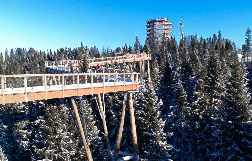 trasa ścieżka w koronach drzew słowacja chodnik bachledka