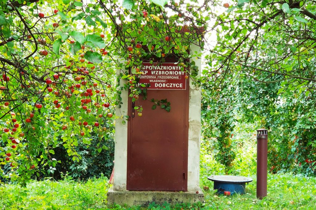 Dobczyce. Zwiedzamy okolice Krakowa. Jednodniowa wycieczka z Krakowa. Atrakcje w Dobczycach. Zabytki Dobczyc