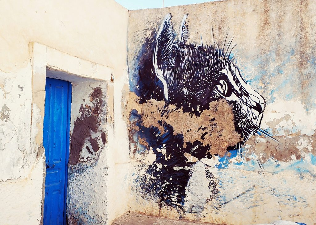 Atrakcje turystyczne Dżerby. Djerba co zwiedzać. Przewodnik po Dżerbie. Co ciekawego zobaczyć na Djarbie. Tunezja Djerbahood