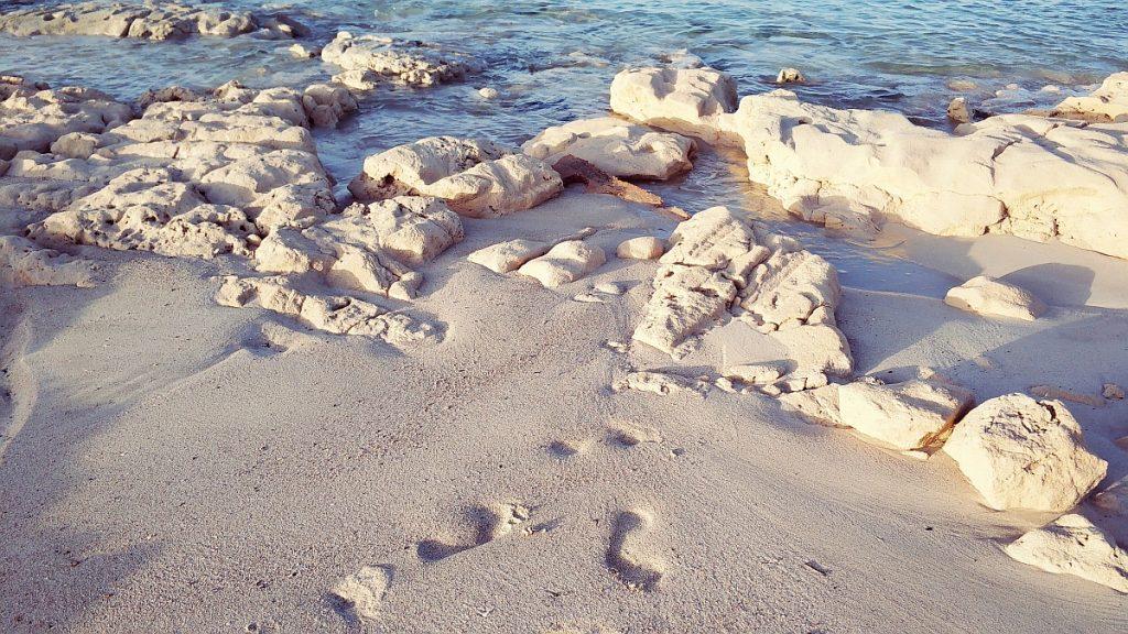 Tunezja zimą