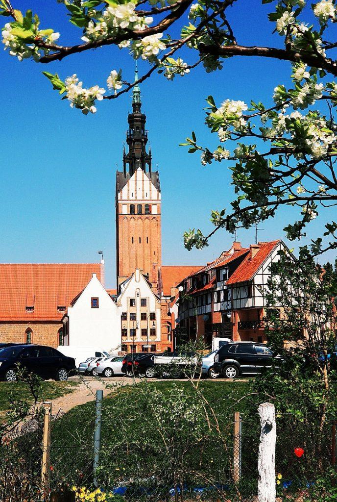 Katedra św. Mikołaja Elbląg