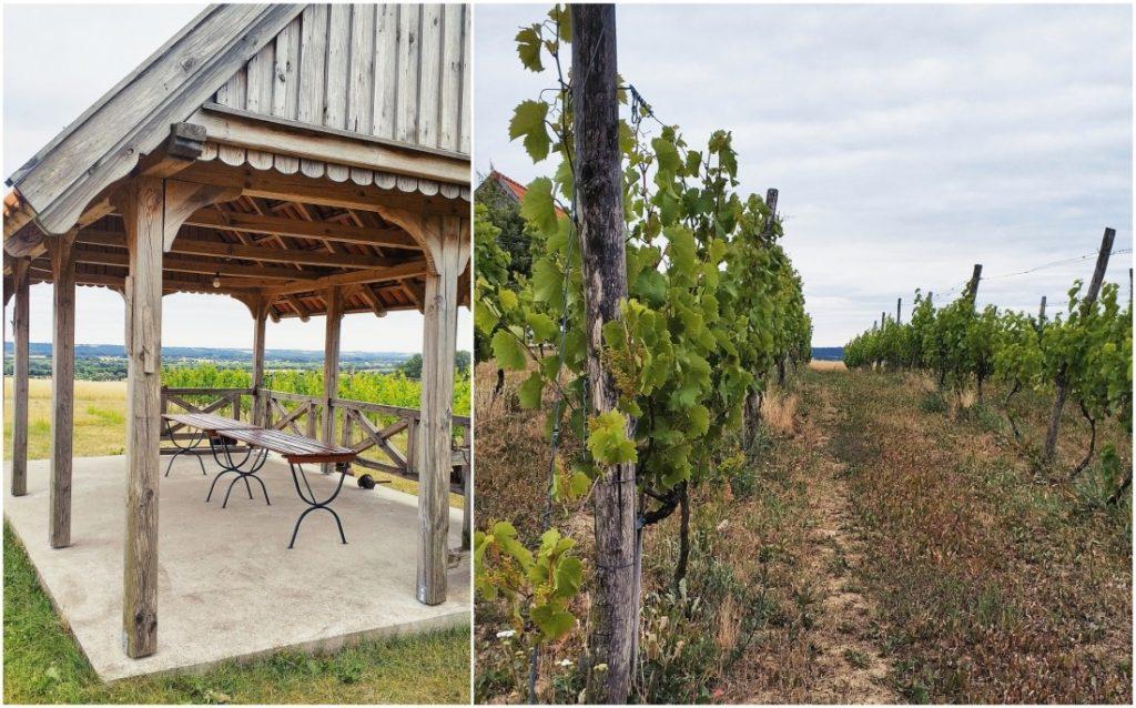 Winnica przy Talerzyku