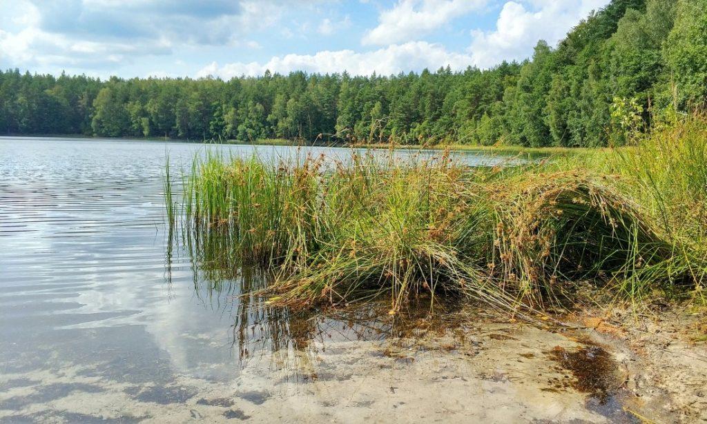 Pojezierze Iławskie. Jezioro Jasne. Jezioro Czyste