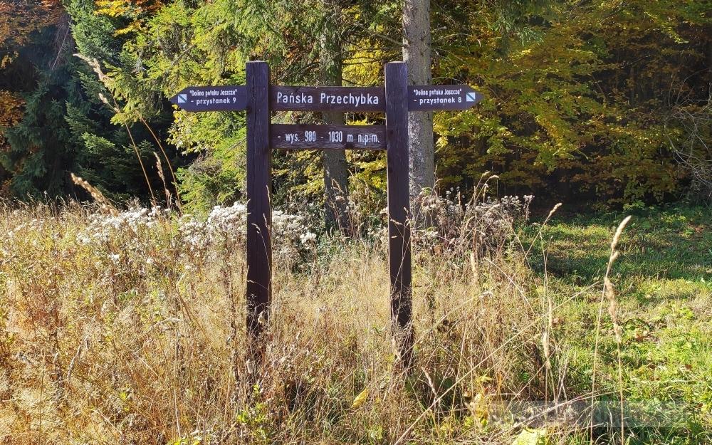 Góry jesienią. Gorczański Park Narodowy. Dolina potoku Jaszcze. Gorce