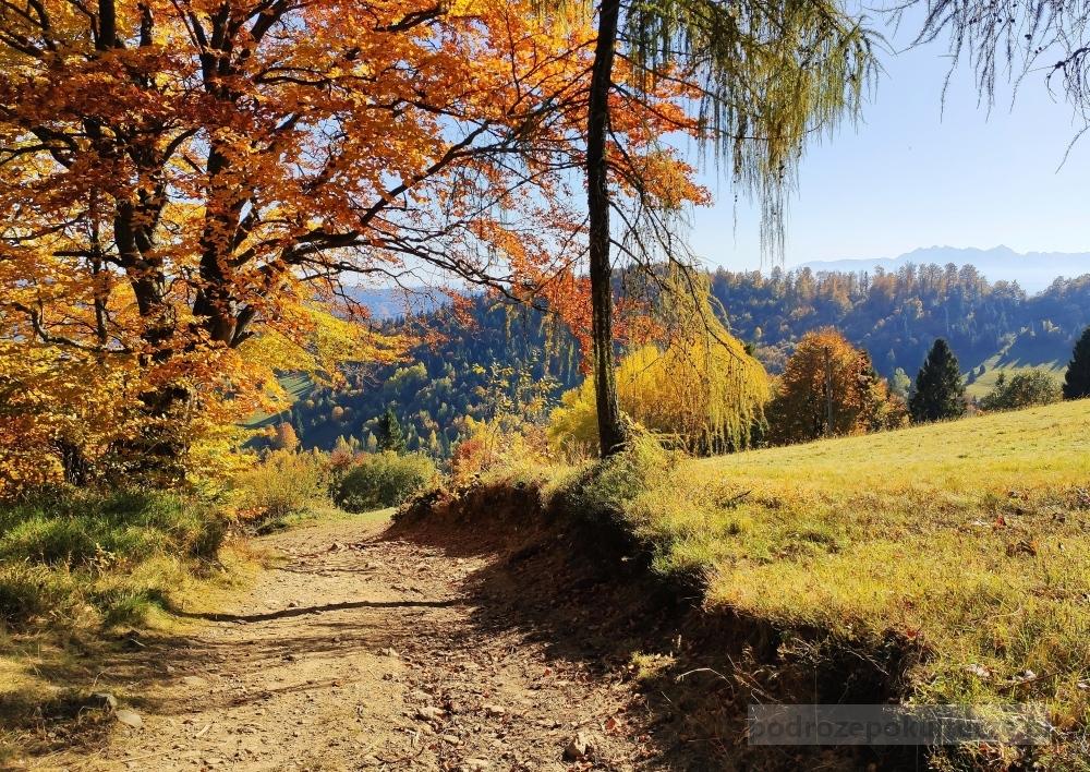 Góry jesienią. Gorce