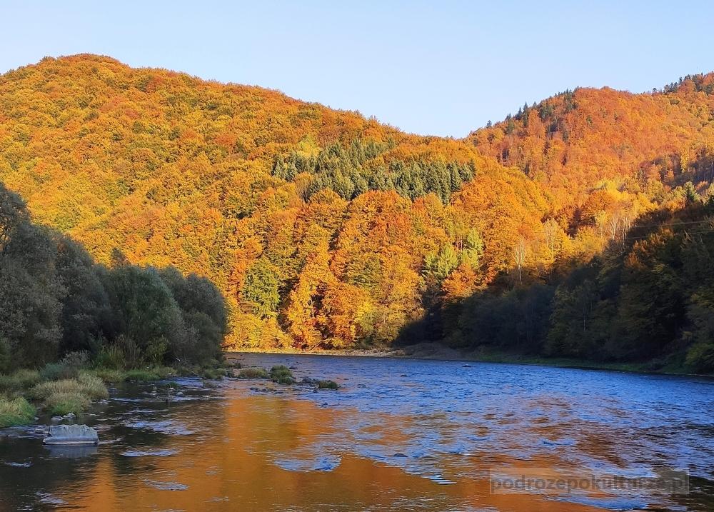 Góry jesienią. Beskid Sądecki. Rezerwat Kłodne nad Dunajcem