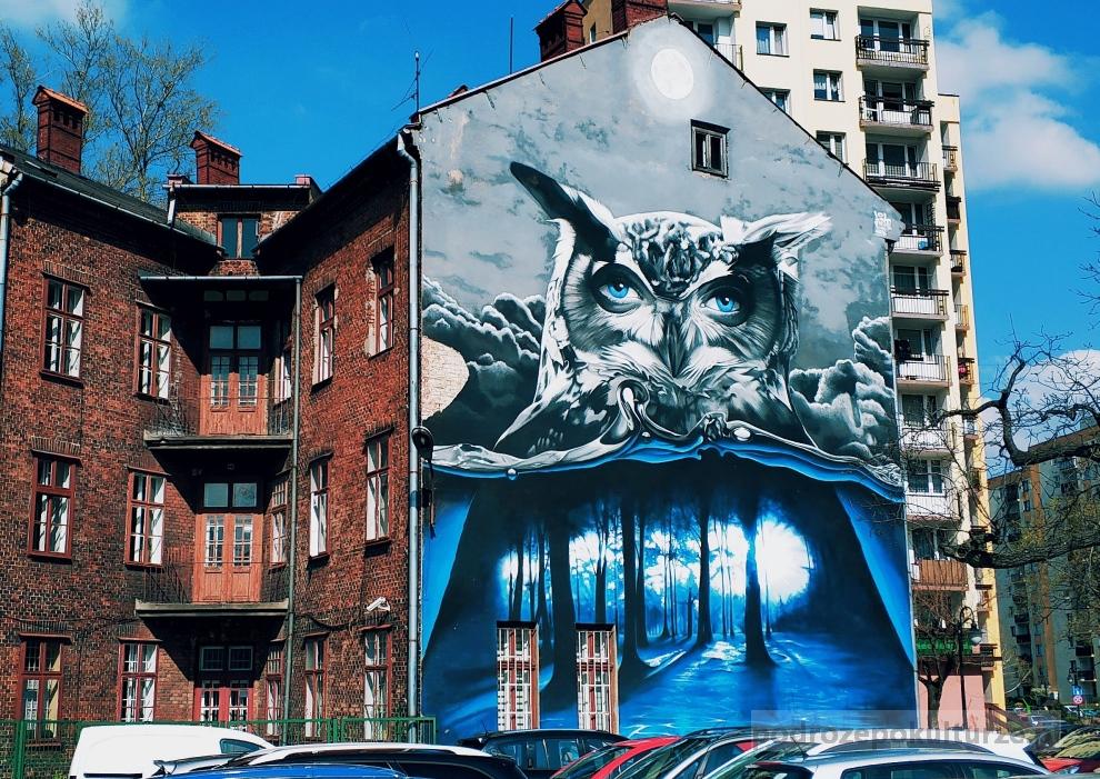 mural sowa Turbos. Street art w Bielsku-Białej