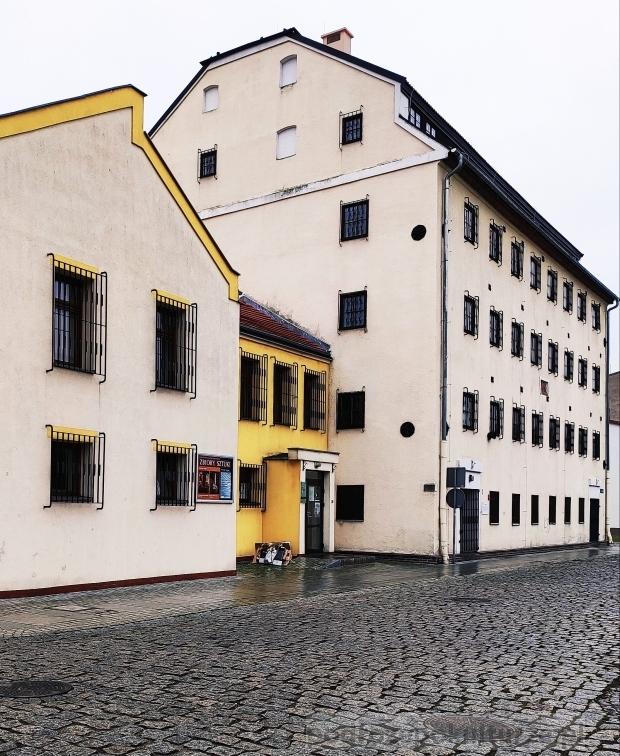Zbiory Sztuki we Włocławku