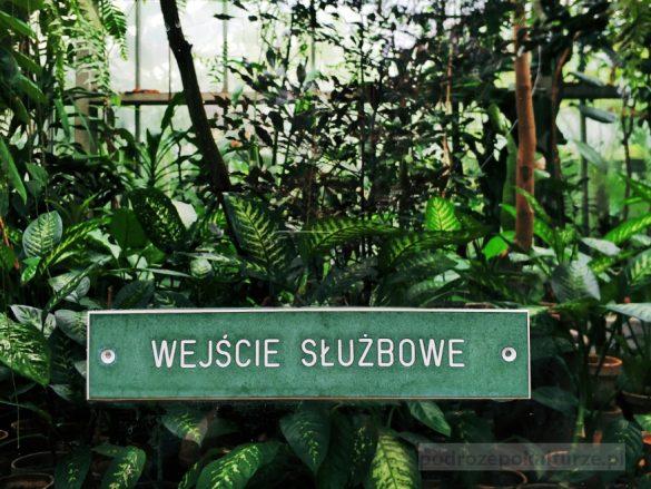 darmowe muzea Poznań