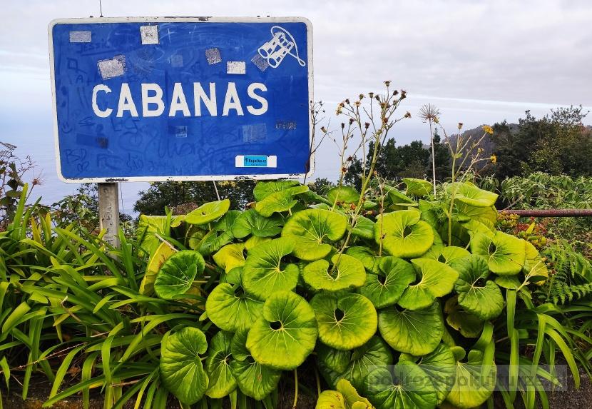 Cabanas Madera