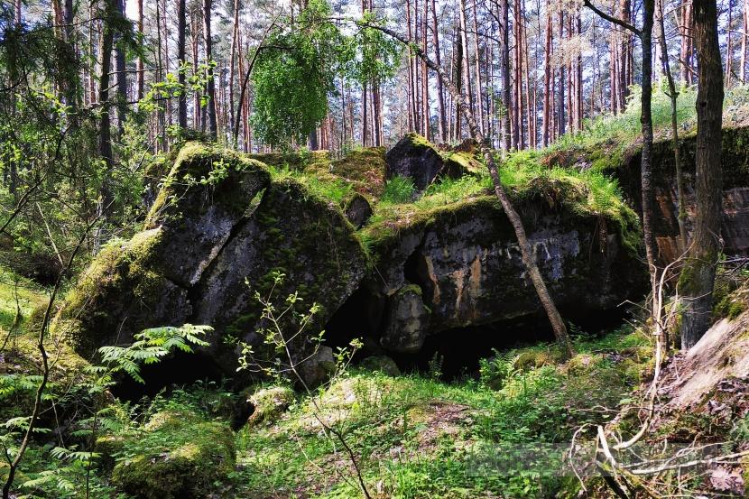 Biebrzański Park Narodowy twierdza osowiec. ruiny fortu czwartego