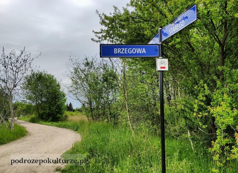 ulica Zygmunta Starego w Krakowie