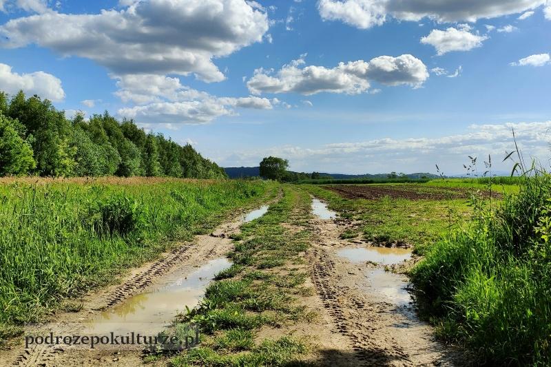 Bronowice Małe Kraków pola uprawne