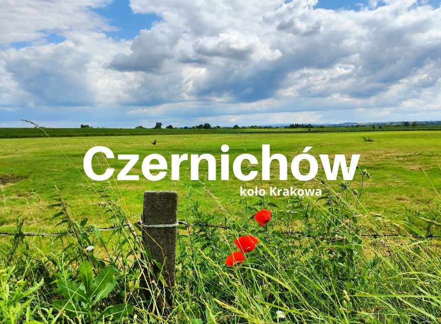 Czernichów, czyli mikroturystyka blisko Krakowa. 9 argumentów za i 1 przeciw