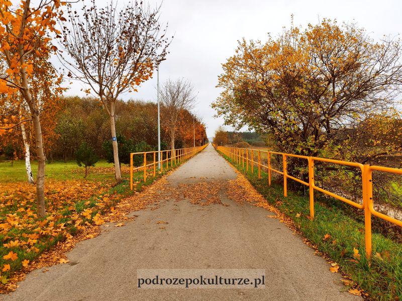 Ścieżka rowerowa Kurzętnik Lipowiec