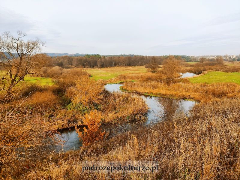 rzeka Drwęca we wsi Kurzętnik