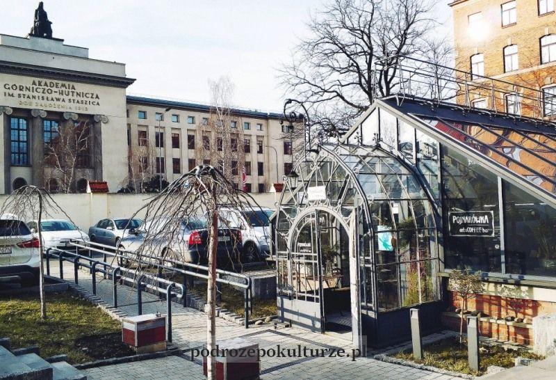 Kawiarnia Pojnarówka w zabytkowej szklarni Uniwersyetu Rolniczego. Nieznane atrakcje Krakowa