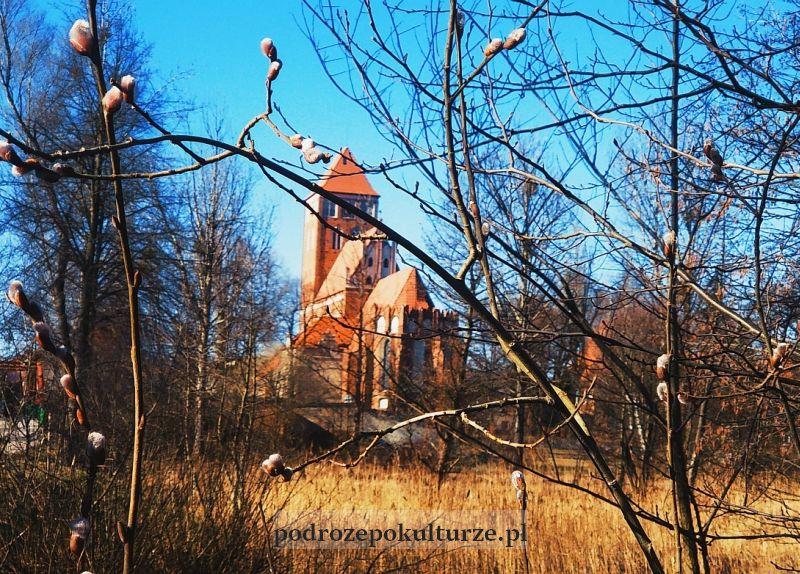 kościół parafialny Nowe Miasto Lubawskie. Kościół gotycki
