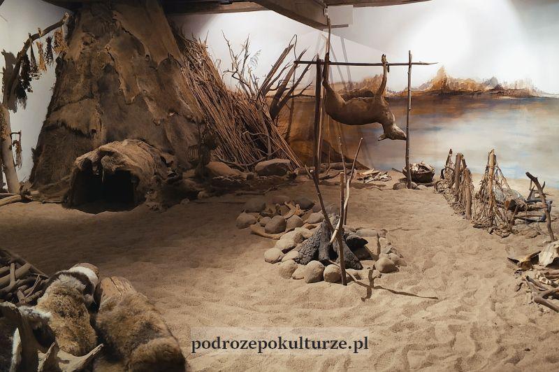 Centrum Edukacji Ekologicznej w Brodnicy