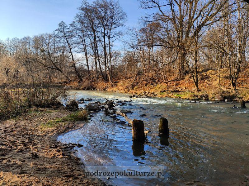 rzeka Świder w Otwocku