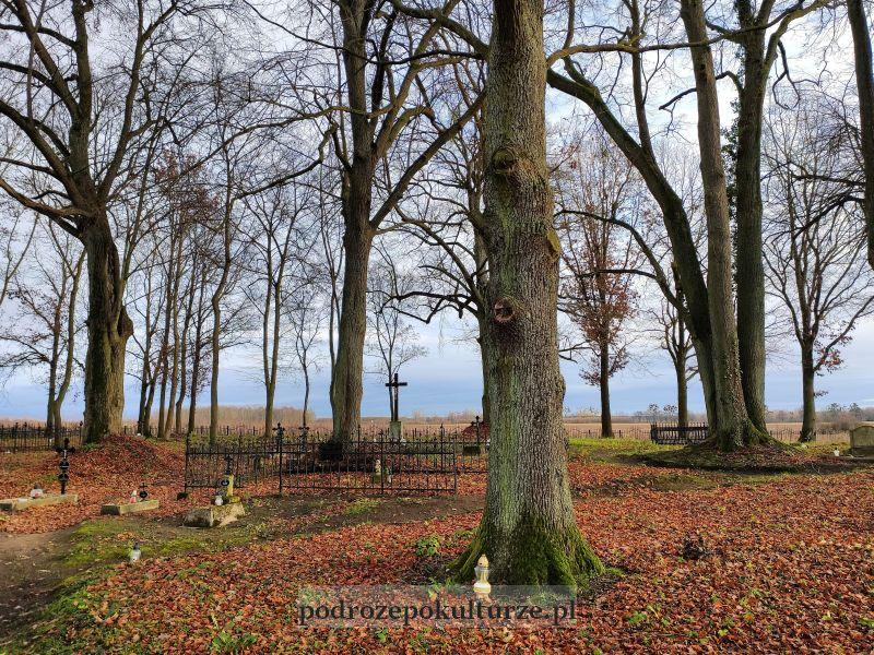 Okolice Iławy tajemnicze miejsca - cmentarz ewangelicki w Wieprzu