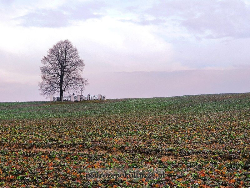 Cmentarze I wojny światowej okręgu Bochnia - Cmentarz wojenny nr 333 Cichawa