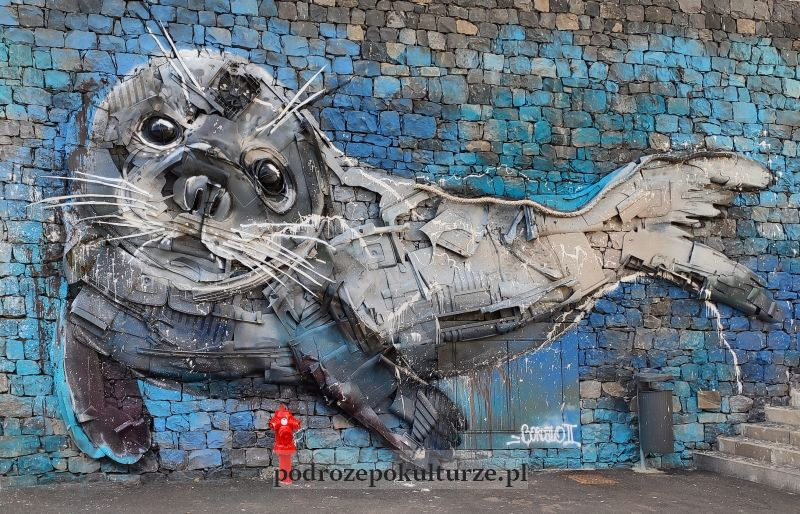 Bordalo II Madera street art Câmara de Lobos