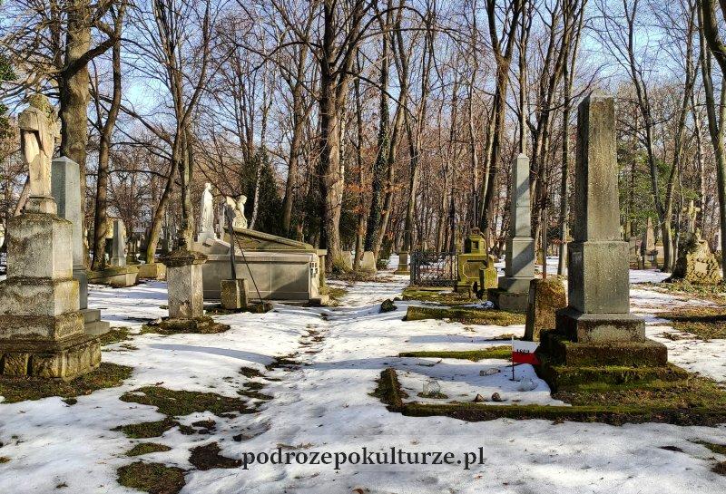 Stary cmentarz Rzeszów zabytki