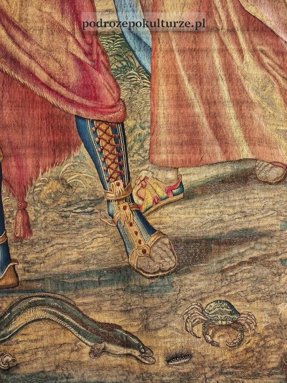 arrasy - fragment krab węgorz