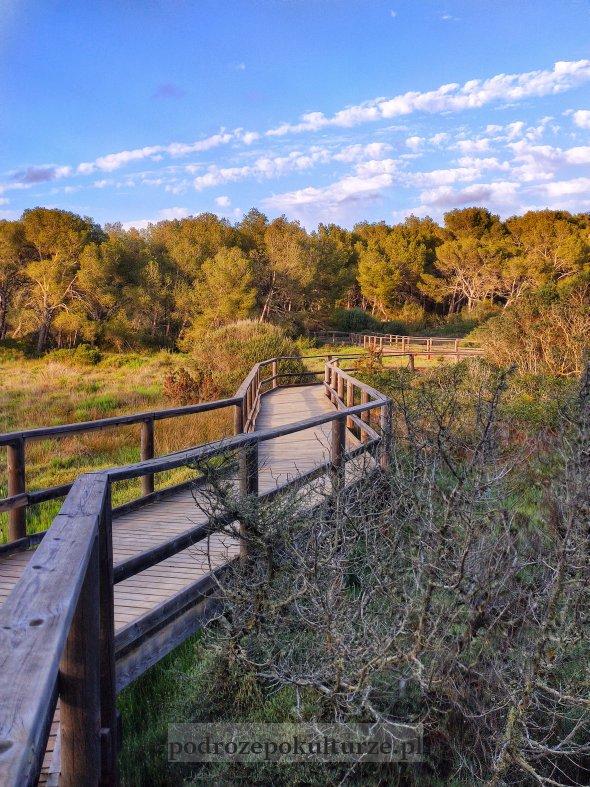 Parc Natural de s'Albufera des Grau Minorka