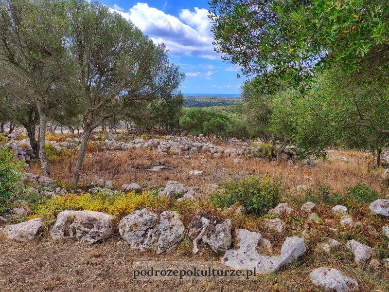 Ruiny osady talajockiej na Minorce
