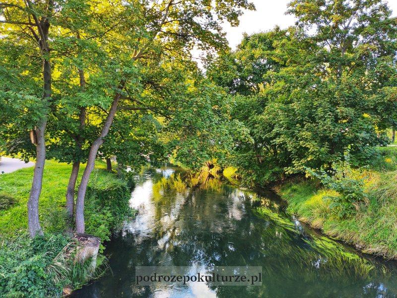 rzeka łyna w Olsztynie