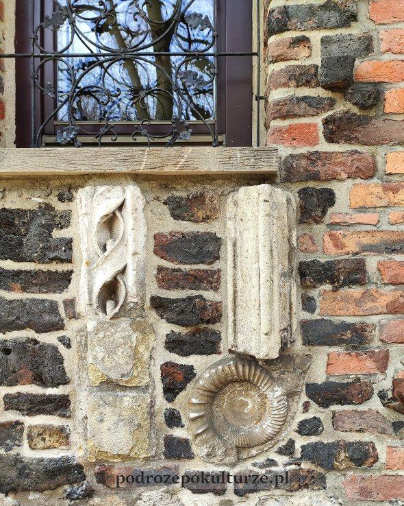 Amonit i wykopaliska na fasadzie św. Stanisława w Krzeszowicach
